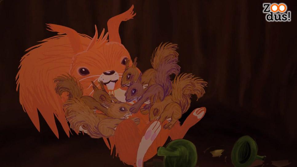 ZOODus-Eekhoorn-babys