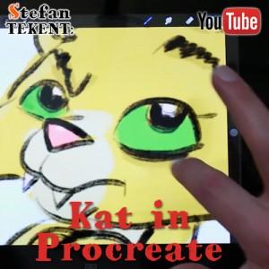 Kat tekenen in Procreate