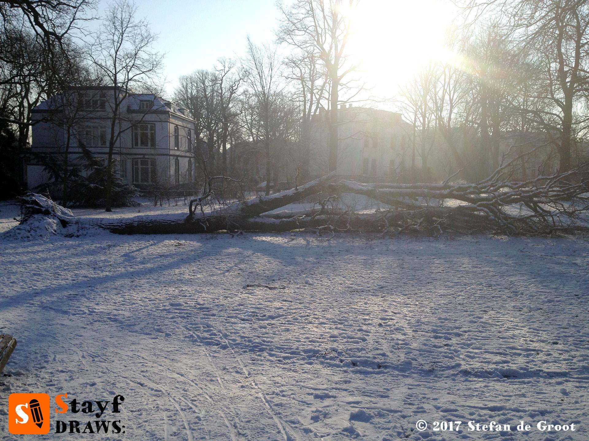 Winter landscape fallen tree
