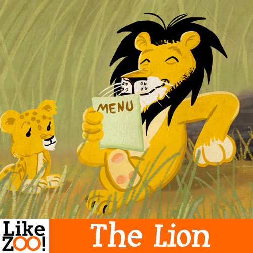 Everything about the lion