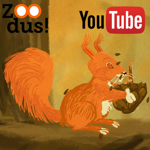 Eekhoorn – ZOODus!